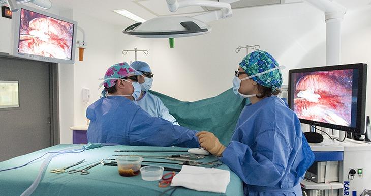 Chirurgie thoracique et vasculaire