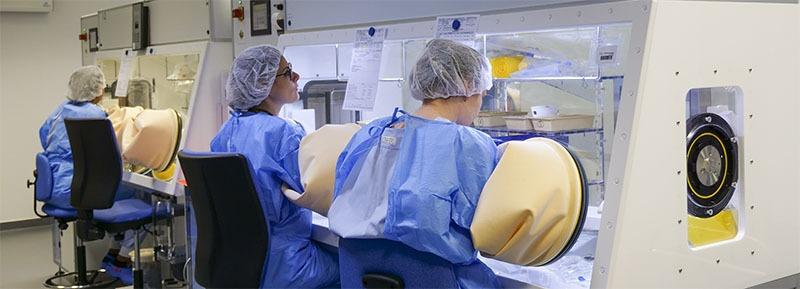 unité de production des chimiothérapie